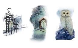 Ställ in av vattenfärgugglor i aftonskog vektor illustrationer