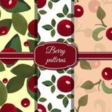 Ställ in Berry Patterns Fotografering för Bildbyråer
