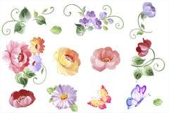 Ställ in blom- beståndsdelar för vattenfärgen - sidor och blommor i vektor I royaltyfri illustrationer