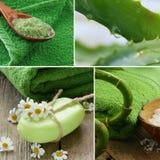 Ställ in brunnsortbegreppsbambu, salt naturlig tvål Royaltyfri Bild