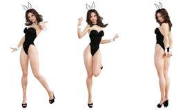 Ställ in Bunny Girl bakgrund isolerade ben long över sexig vit kvinna Röda baddräktskor Royaltyfri Bild