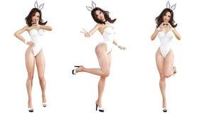 Ställ in Bunny Girl bakgrund isolerade ben long över sexig vit kvinna Röda baddräktskor Fotografering för Bildbyråer