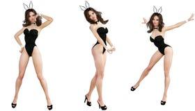 Ställ in Bunny Girl bakgrund isolerade ben long över sexig vit kvinna Röda baddräktskor Arkivbild