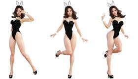 Ställ in Bunny Girl bakgrund isolerade ben long över sexig vit kvinna Röda baddräktskor Arkivfoton
