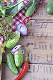 Ställ in för hem- gurkor på burk på en bakgrund av löken, dill, p Arkivbilder