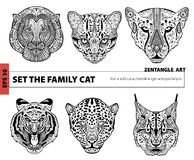 Ställ in familjkatten, färgläggningboken för vuxna människor, zentanglekonst som är passande Arkivfoton