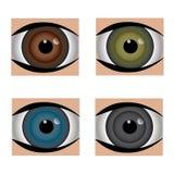 Ställ in fyra gemensamma ögonglobfärger Royaltyfri Foto