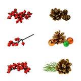 Ställ in garnering Kottar röda bär, filialer av julgranar royaltyfri bild