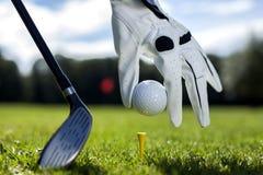 Ställ in golfboll på en pinne Arkivbilder
