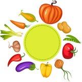 ställ in grönsaken Royaltyfria Bilder