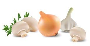 ställ in grönsaker Royaltyfri Foto