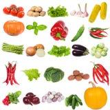 ställ in grönsaker Royaltyfria Bilder