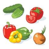 ställ in grönsaker Royaltyfri Fotografi