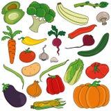 ställ in grönsaker vektor illustrationer