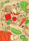 Ställ in grönsaker, illustration royaltyfri foto