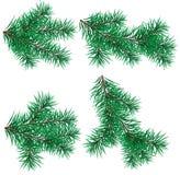 Ställ in julgranen som filialen för dekorerar Royaltyfri Illustrationer
