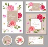Ställ in kortet med rosor vektor för detaljerad teckning för bakgrund blom- designsammansättning Royaltyfria Foton