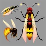 Ställ in med bin och honung stock illustrationer