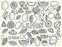 Ställ in med citronklottersymbolen Royaltyfri Foto