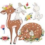 Ställ in med gulliga hjortar och hare vektor illustrationer