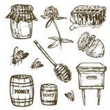 Ställ in med honungbeståndsdelar Skorra, skeda, klibba, celler, växt av släktet Trifolium, bikupan, biet, citronen, kagge royaltyfri illustrationer