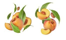 Ställ in med persikor, exklusiv collage med flygpersikor Högt beträffande arkivfoton