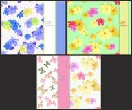 Ställ in modellen för kort med fjärilar och hibiskusen vektor Arkivfoton