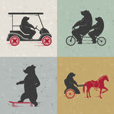 Ställ in roliga björnar för tecknet Fotografering för Bildbyråer