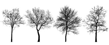 ställ in silhouettestrees Arkivfoton