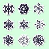 ställ in snowflakes Härlig vinterprydnad Samling av stic Royaltyfria Foton