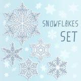 ställ in snowflakesvintern Royaltyfri Fotografi
