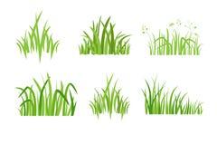 Ställ in symbolen Eco för grönt gräs royaltyfri illustrationer