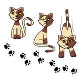Ställ in symbolen för vektorn för kattfoten Stock Illustrationer