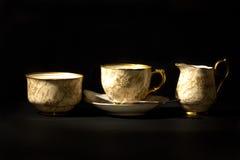 ställ in tea royaltyfri foto
