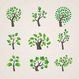 ställ in trees vektor illustrationer