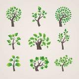 ställ in trees Royaltyfri Fotografi