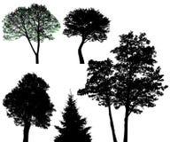 ställ in treesvektorn Fotografering för Bildbyråer