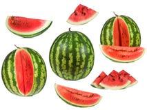 ställ in vattenmelonen Fotografering för Bildbyråer