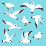 Ställde den atlantiska seabirden in för tecknade filmen, seagulls som flyger i vektor för blå himmel vektor illustrationer