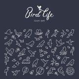 Ställde den plana fågelsymbolen in för vektorn i den tunna linjen stil Enkel minimalistic fågellogo Fågelsymbol, djurt tecken, sy stock illustrationer