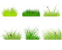 ställde gröna isolerade objekt in för gräs Arkivfoton