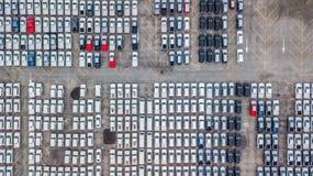 Ställde upp nya bilar för flyg- sikt i porten för import och export, fotografering för bildbyråer