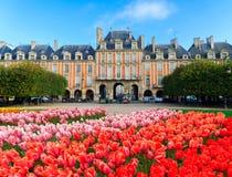 Ställe de Vosges, Paris arkivfoton