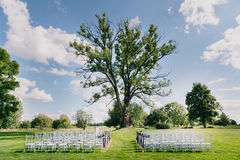 Ställe för en bröllopceremoni Träd, stolar och gräs Bleuhimmel royaltyfri foto