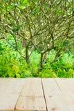 Ställe för objekt på trätabellen med grön sommar Arkivfoto