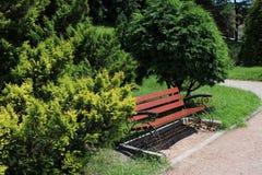 Ställe som vilar med bänken i trädgård Arkivbilder