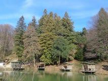 Ställen för att fiska på sjön i träna Arkivfoto