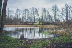 Stället av en fiskare på banken av floden, sjön i hösten bland vasserna Royaltyfri Foto