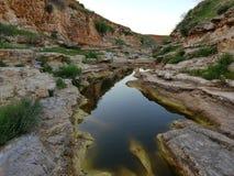 Ställningslugnt vatten i ett damm mellan vaggar i vår i nordlig Jordanien royaltyfri bild
