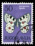 Stämpeln som skrivs ut i Jugoslavien, visar fjärilen royaltyfria bilder